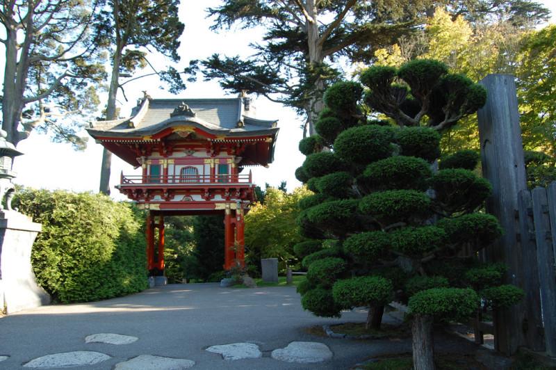 The Japanese Garden in the Golden Gate Park