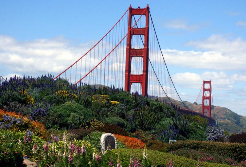 Green around the Golden Gate Bridge