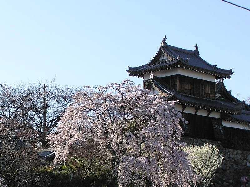 Koriyama_Castle_Nara