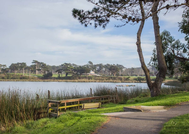 Lake Merced Park San Francisco