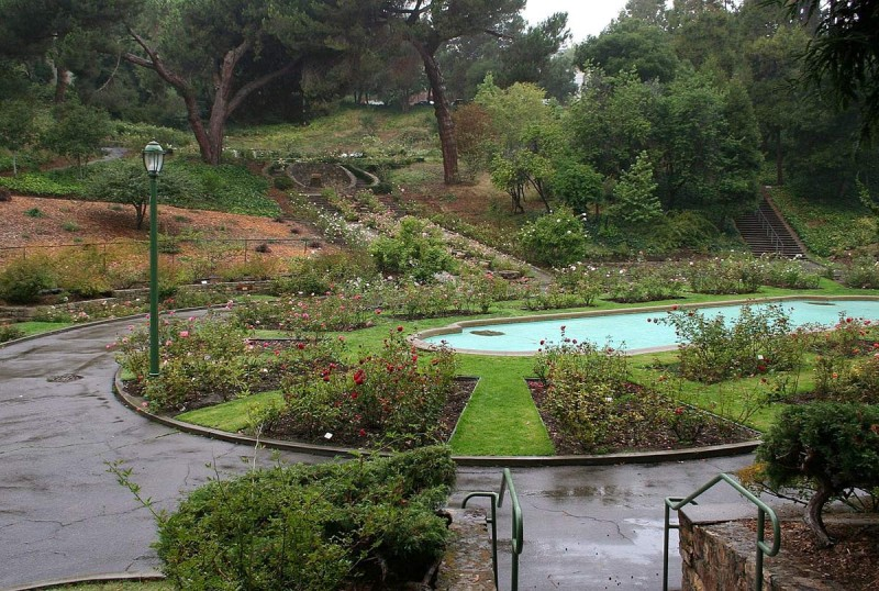 7 Parks to Go in Oakland – Trip-N-Travel