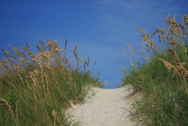 Sand Dunes Harbor Cove