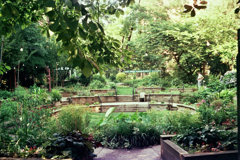 10 Parks And Gardens To Go In Monterey – Trip-N-Travel