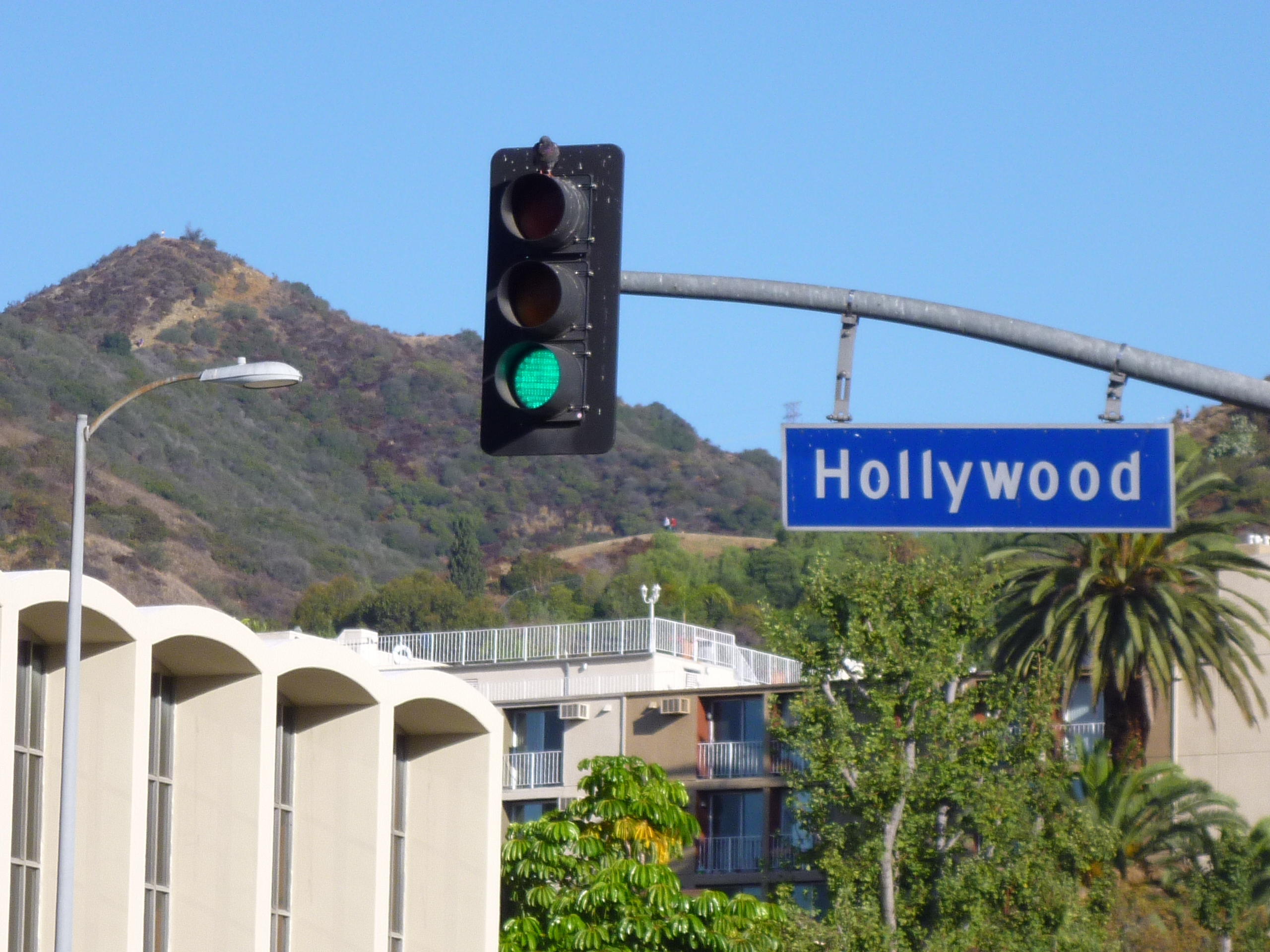 Things to do in Hollywood