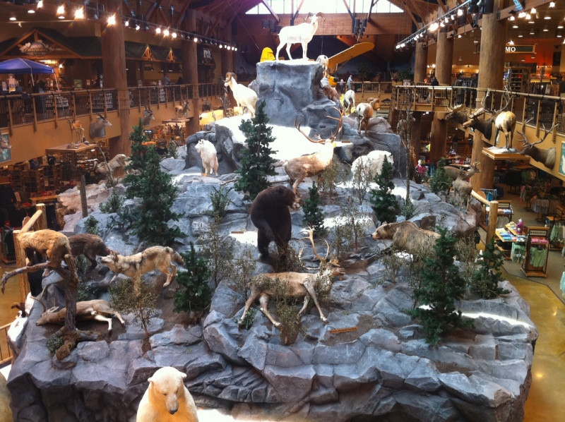 Cabela's awesome view