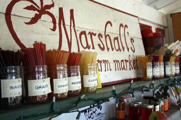 marshalls farm market