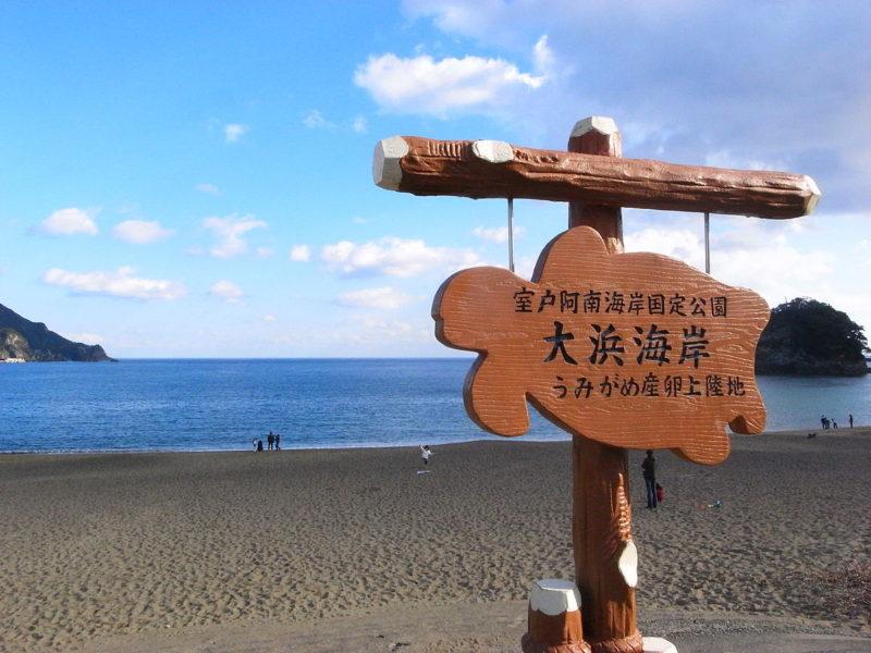 tokushima8