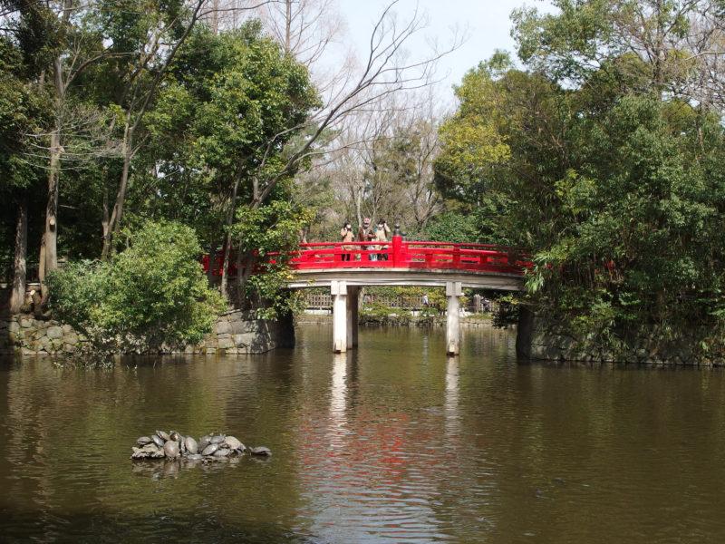 Omiya Pond